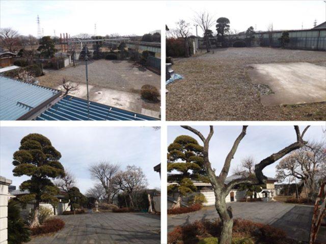 広い敷地の庭
