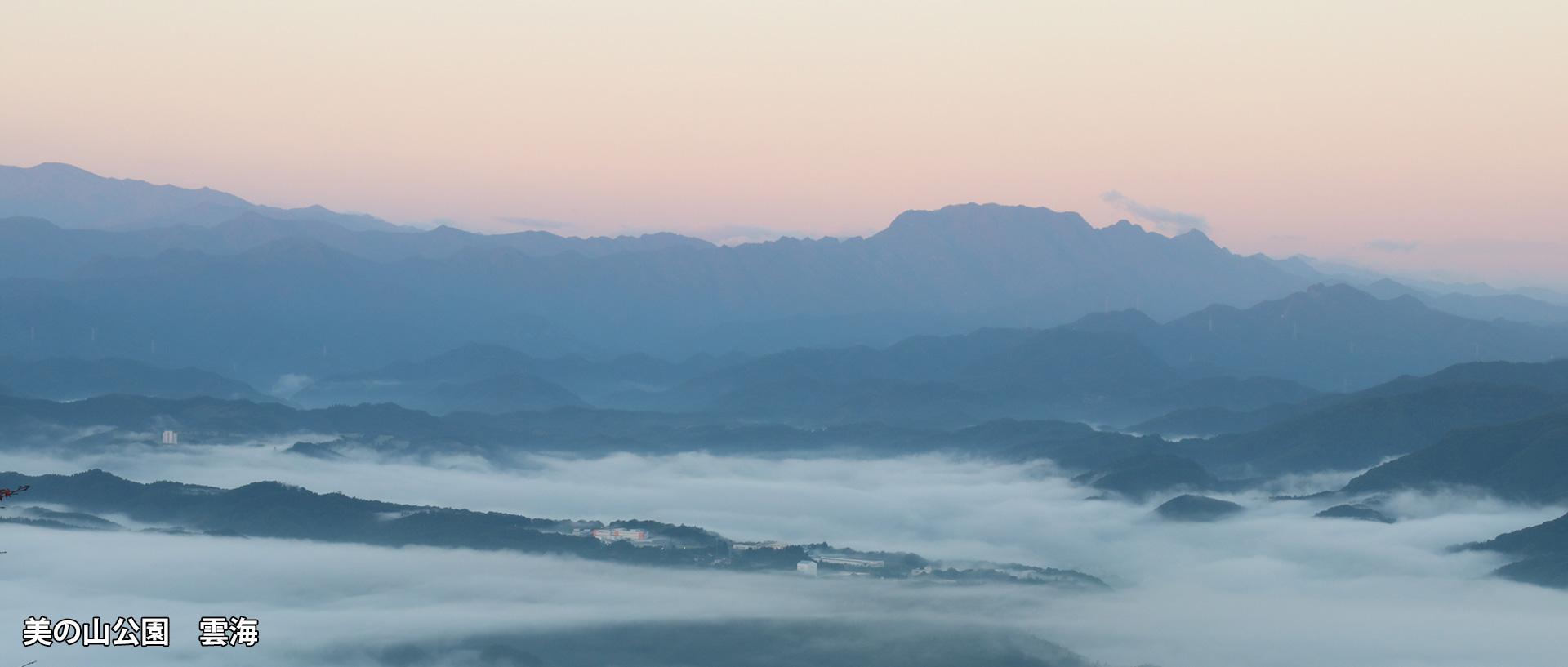 美の山公園 雲海