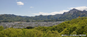 秩父のシンボル武甲山と秩父市街